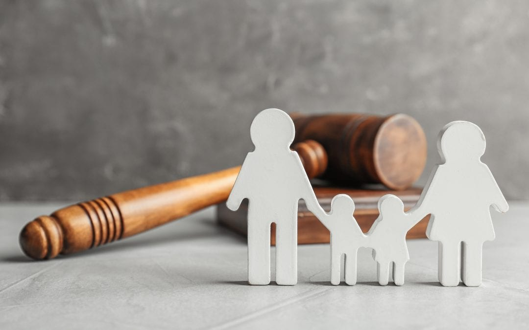 What is the Difference between Guardianship, Custody, and Adoption, of a Minor Child?